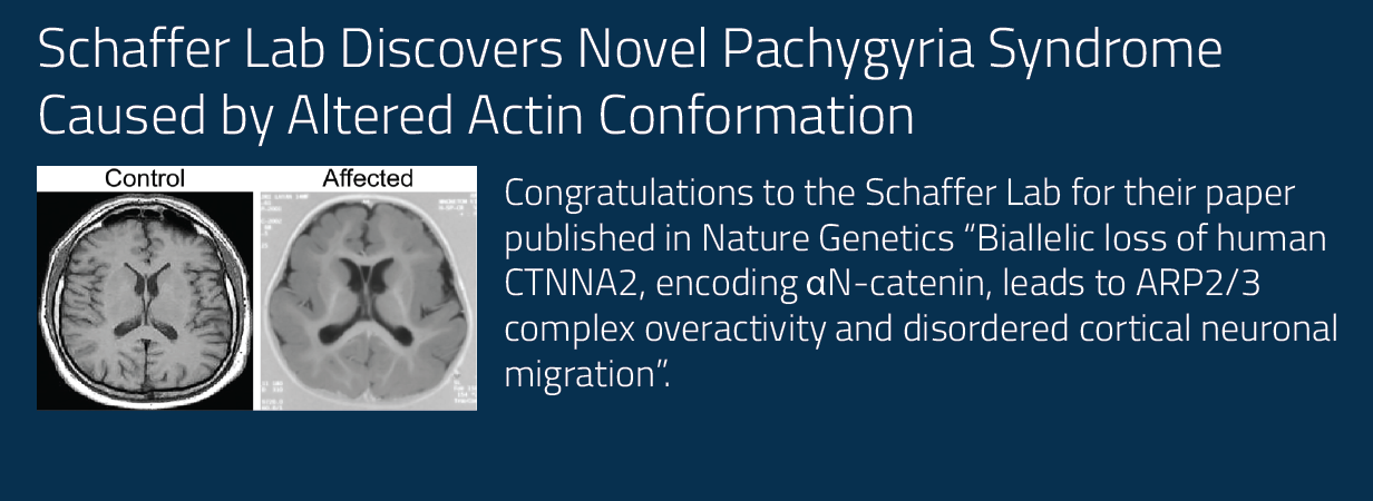 Congratulations to the Schaffer Lab for their paper published in Nature Genetics