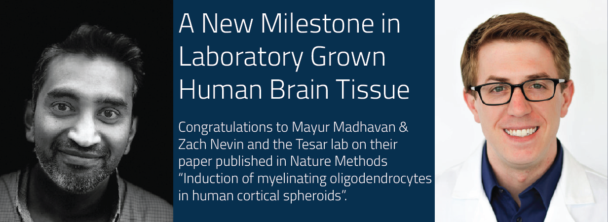 Congratulations to Mayur Madhavan & Zach Nevin and the Tesar lab on their paper published in Nature Methods